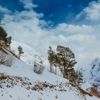 горнолыжный тур в Домбай