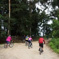 семейный отдых в Абхазии